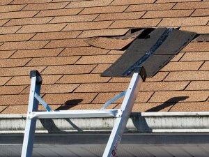 Roof Maintenance Repair