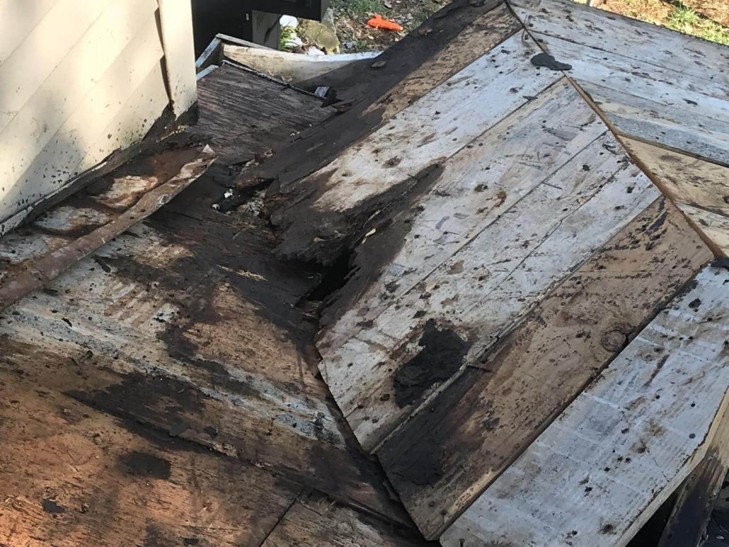 Prevent Roof Rot
