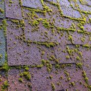 Killing Moss On Roof