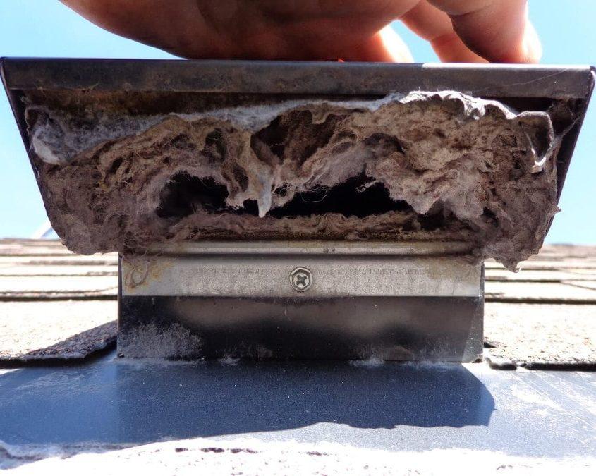 Roof Dryer Vent Clog